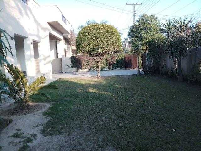 32 MARLA HOUSE AVAILABLE FOR RENT in Cantt